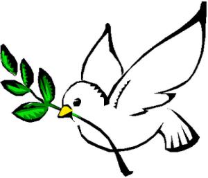 paloma-de-la-paz-47